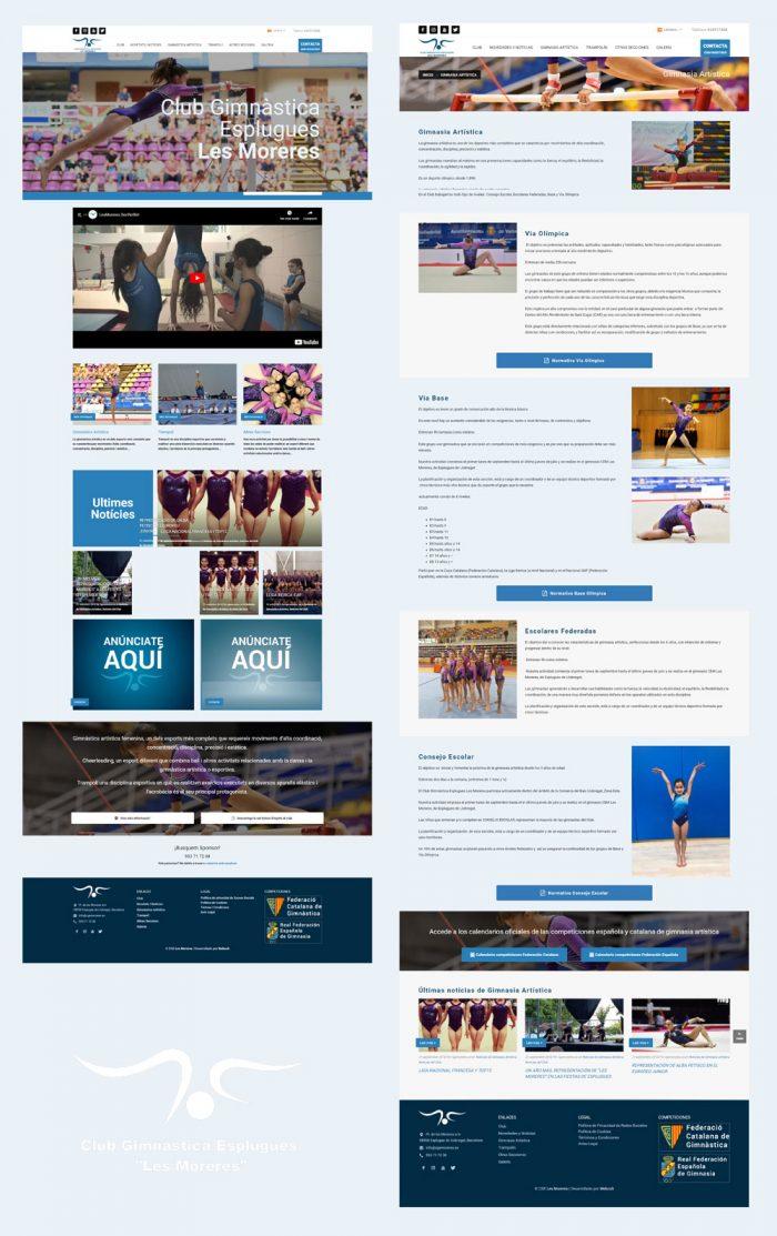 web para gimnasio
